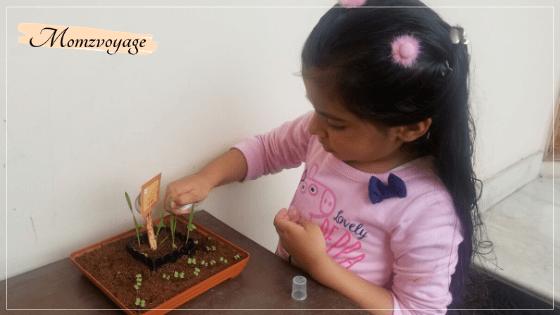 little girl growing a small garden